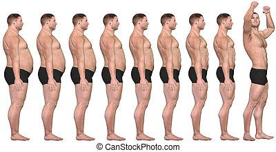 dik, te passen, voor, na, 3d, man, gewicht aderlating,...