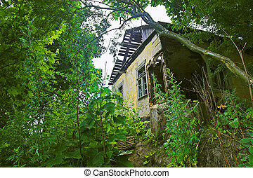 Dilapidated house in forest on hill