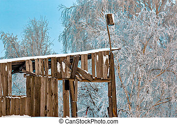 Dilapidated wooden building with a birdhouse on the background of trees in the frost.