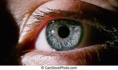 dilating, gris, oeil, tir, femme, pupille, macro