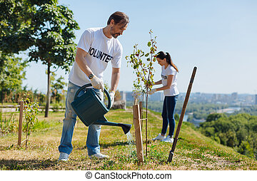 Diligent clever man nurturing new trees with moist