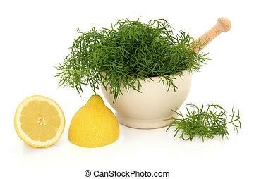dill, ört, och, citron