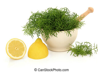 Dill herb leaf sprigs in a stone mortar with pestle and lemon fruit halves isolated over white background.