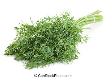 Dill herb - Dill fresh green herb bundle on white