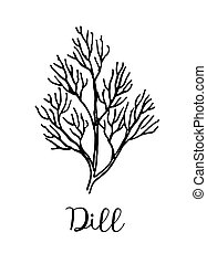 Dill ink sketch. Isolated on white background. Hand drawn...