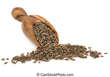 Dill herb seed in an olive wood scoop over white background.