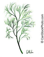 Dill, watercolor illustration