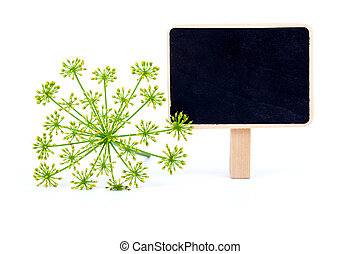 dill with letter plate, on a white background