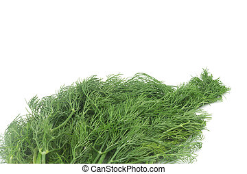 Dill with Roots Isolated on White Background