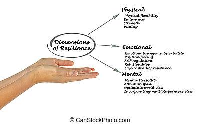 dimensions, résilience