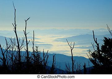 dimma, mountains, rökig, morgon