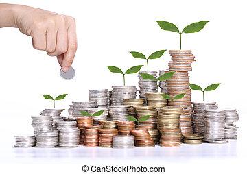 din, budget, investering, insättning
