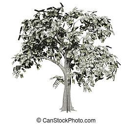 dinero, 2, árbol