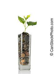 dinero, concepto, ahorro