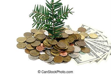 dinero, concepto, crecimiento