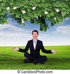 dinero, cubrir, árbol, joven, empresa / negocio
