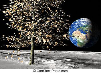 dinero, euro, árbol, 50, luna