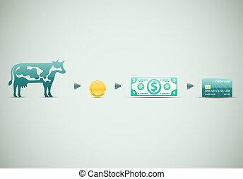 dinero, evolución