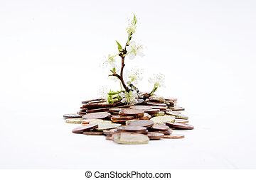 dinero, retoños, verde