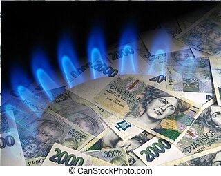 dinero, y, asfixíe gas estufa, -, coronas