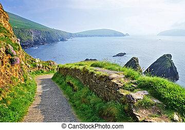 dingle, skalisty, kerry, półwysep, brzeg, hrabstwo, irlandia, port, dunquin