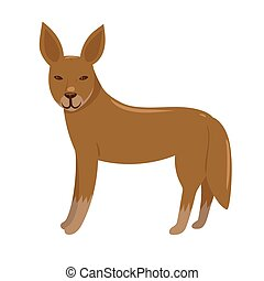 Dingo isolated on a white background. Vector graphics.