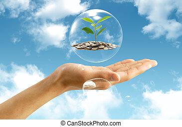 dinheiro, conceito, poupar