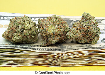 dinheiro, marijuana