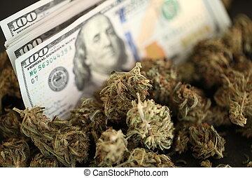 dinheiro, negócio, marijuana, cannabis, concept., médico, ...