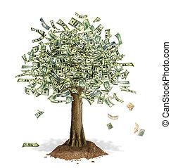 dinheiro, notas, dólar, leaves., árvore, lugar, nós, banco