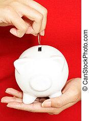 dinheiro saving