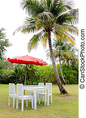 dining room table under coconut trees