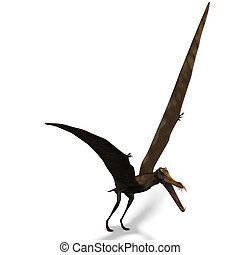 Dinosaur Anhanguera Pterosaur. 3D rendering with clipping path and shadow over white