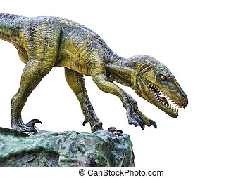 Dinosaur isolated over white background