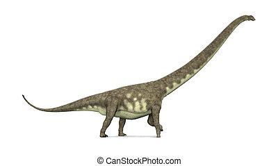 Dinosaur Mamenchisaurus - Computer generated 3D illustration...