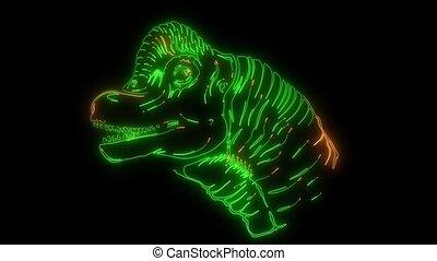 Dinosaur silhouettes face video laser animation - Dinosaur...