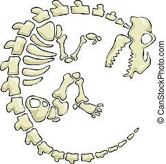 Dinosaur skeleton on a white background, vector