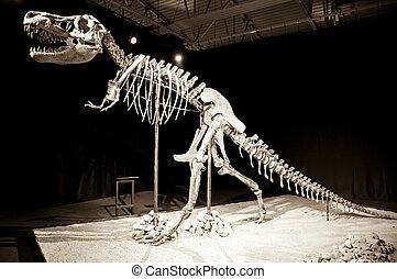 Dinosaur skeleton - Taubosaurus Bataar