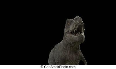 dinosaur T-Rex loop walking with alpha channel