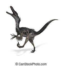 Dinosaur Velociraptor. 3D rendering with clipping path and...