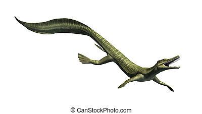 dinosaure, aquatique, -, mesosaurus