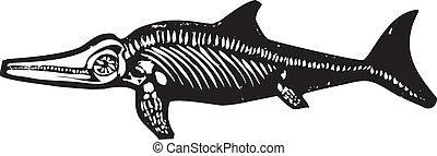 dinosaurio, ichthyosaur, fósil