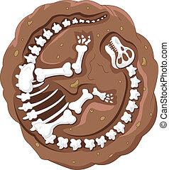 dinosauro, cartone animato, fossile