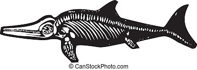 dinosauro, ichthyosaur, fossile