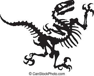 dinosauro, vettore, raptor, fossile