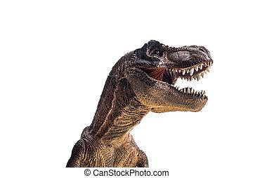 dinosaurus, t-rex, tyrannosaurus, op wit, achtergrond