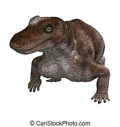 dinosaurus, vertolking, witte , 3d, keratocephalus