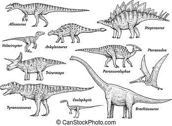 dinosaurus, verzameling, illustratie, tekening, gravure, inkt, lijnen kunst, vector