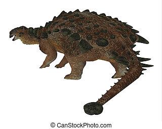 dinossauro, rabo, pinacosaurus