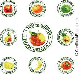 dipinto, frutta, vettore, icona